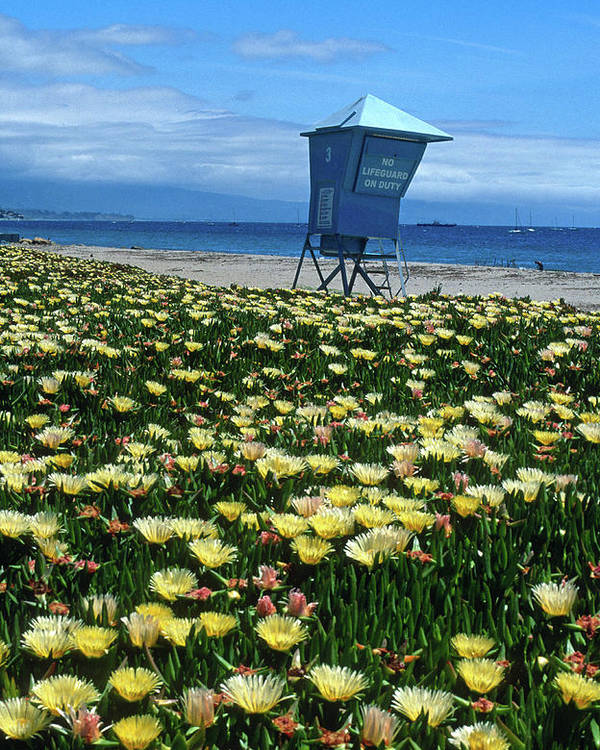 Beach Poster featuring the photograph Spring Break Santa Barbara by Kathy Yates