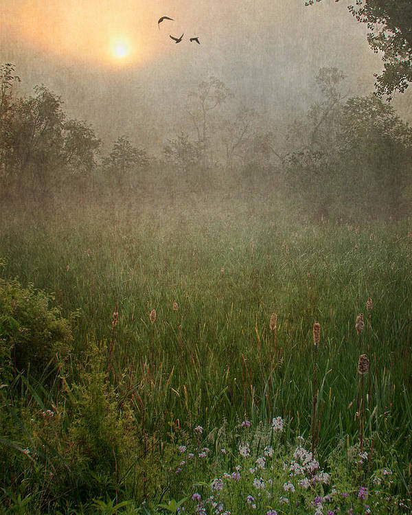 Sunrise Poster featuring the photograph Spring Sunrise In The Valley by Dale Kincaid