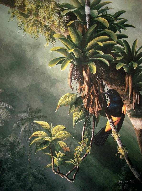 Chris Cox Poster featuring the painting St. Lucia Oriole In Bromeliads by Christopher Cox