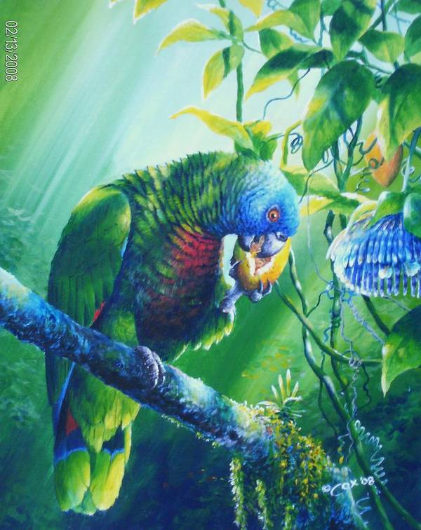 Chris Cox Poster featuring the painting St. Lucia Parrot And Wild Passionfruit by Christopher Cox
