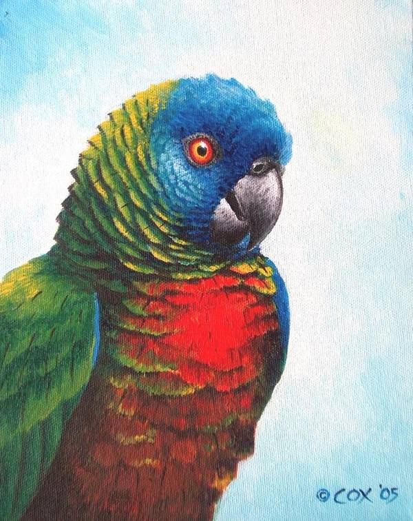 Chris Cox Poster featuring the painting St. Lucia Parrot by Christopher Cox