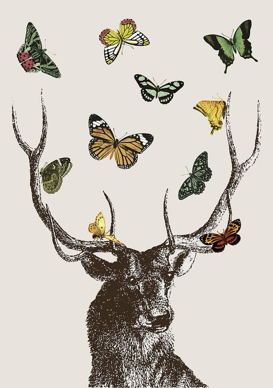 Stag And Butterflies Poster featuring the digital art Stag And Butterflies by Eclectic at HeART