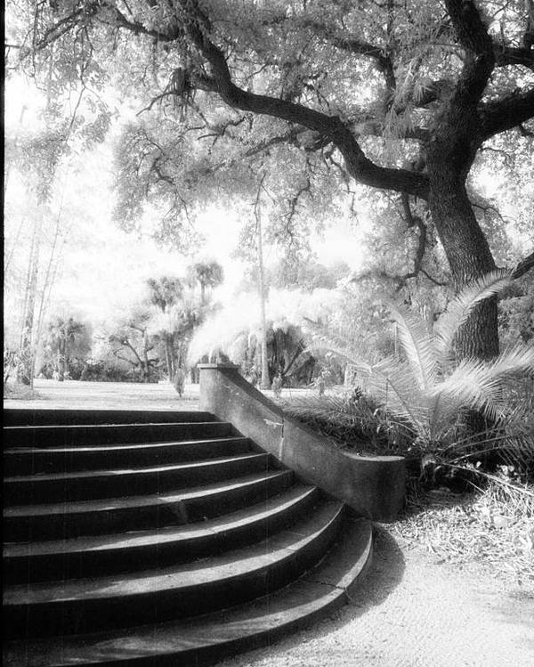 Infrared Poster featuring the photograph Stairway by Michael L Kimble
