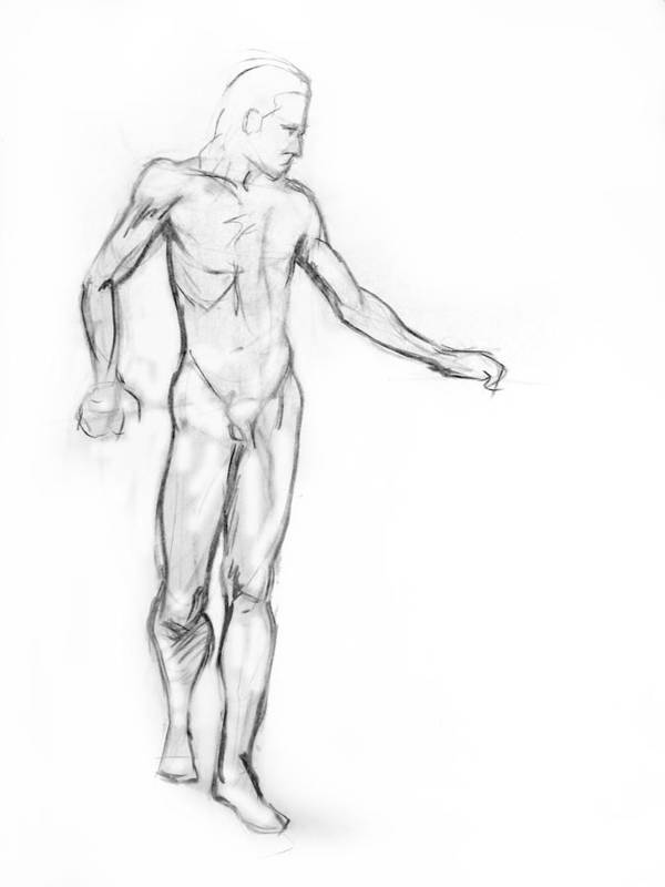 Drawing Poster featuring the drawing Standing Male Nude by Adam Long
