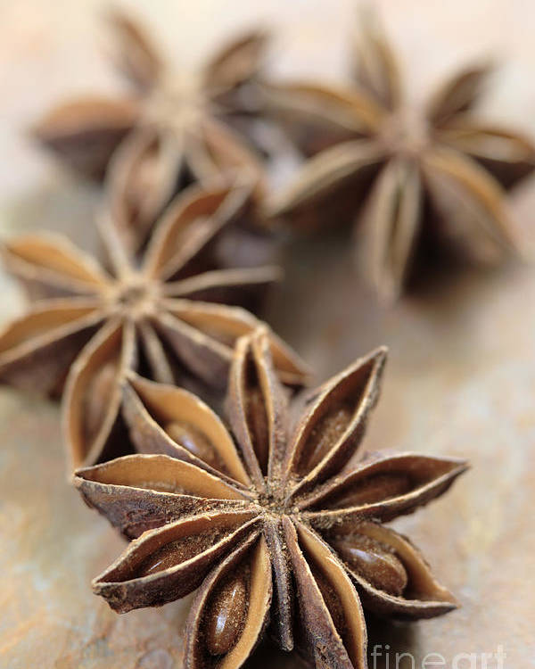 Star Poster featuring the photograph Star Anise by Neil Overy