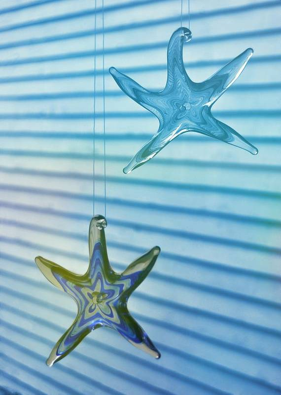 Star Poster featuring the photograph Star Bright by JAMART Photography