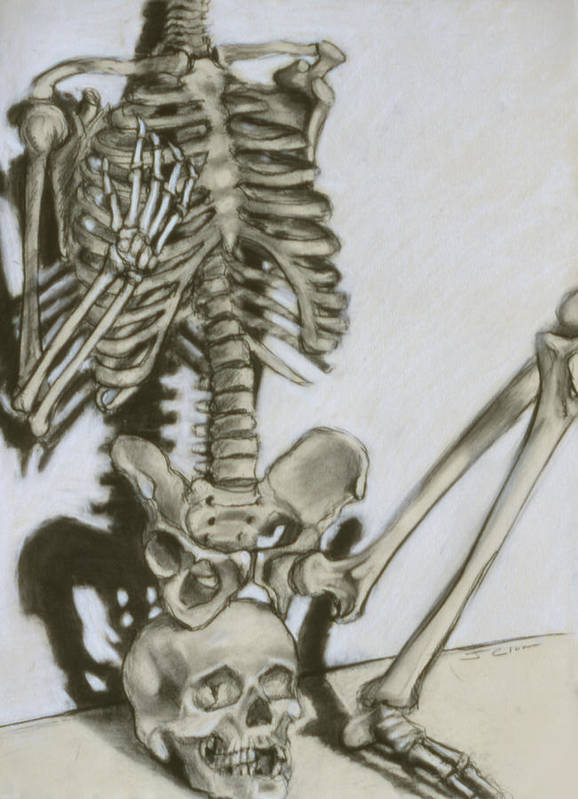 Skeleton Poster featuring the drawing Still Life by John Clum