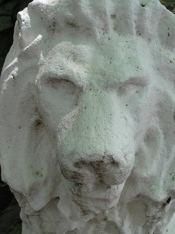 Leo Poster featuring the photograph Stonework Leo by Belinda Consten