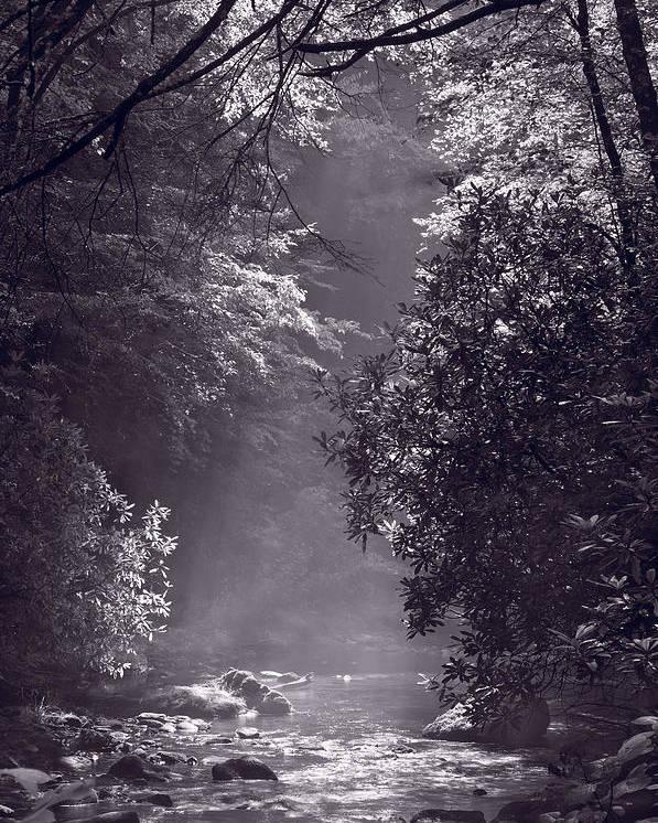 Blueridge Poster featuring the photograph Stream Light B W by Steve Gadomski