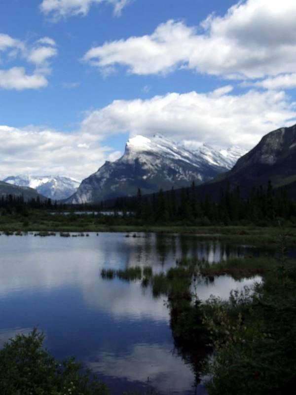 Landscape Poster featuring the photograph Summertime In Vermillion Lakes by Tiffany Vest