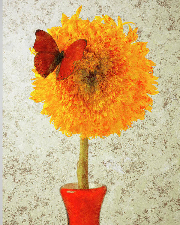 Red Butterfly Sunflower Yellow Abstract Poster featuring the photograph Sunflower And Red Butterfly by Garry Gay