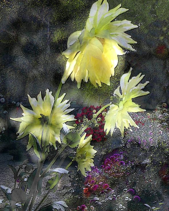 Sun Flower Poster featuring the digital art Sunflower Dream by Tom Romeo