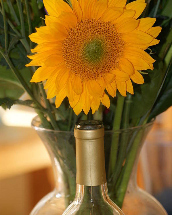 Sunflower Poster featuring the photograph Sunflower In A Bottle Or Is It Vase. by Liz Vernand