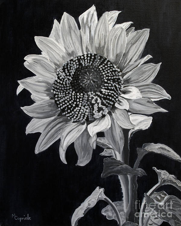 Flower Poster featuring the painting Sunflower Sutra by Mary Capriole