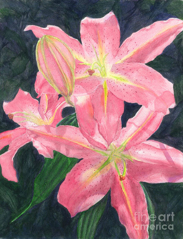 Floral Poster featuring the painting Sunlit Lilies by Lynn Quinn