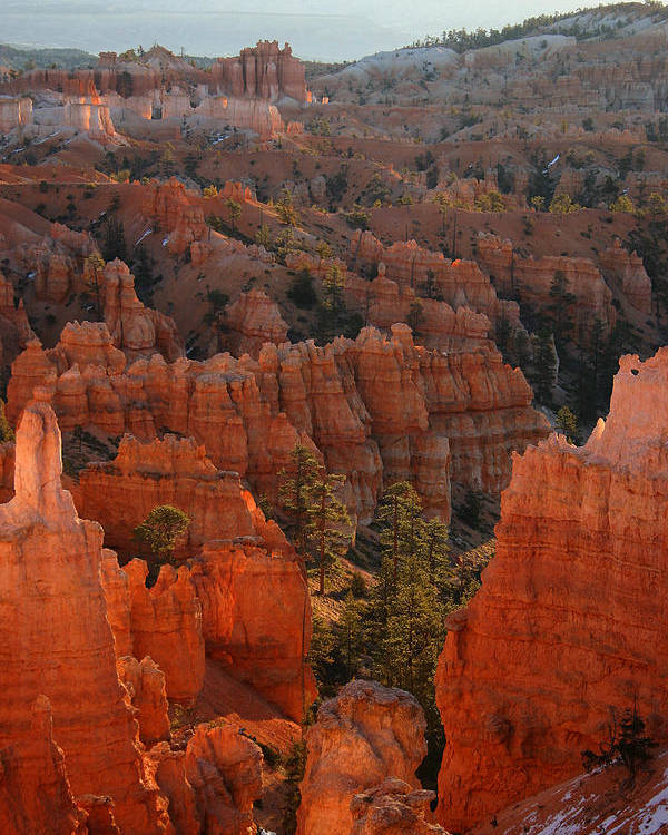 Bryce Canyon National Park Poster featuring the photograph Sunrise On The Hoodoos by Brian M Lumley