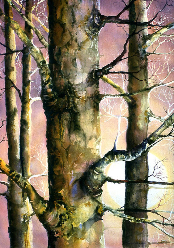 Trees Poster featuring the painting Sunset Forest by Connie Williams