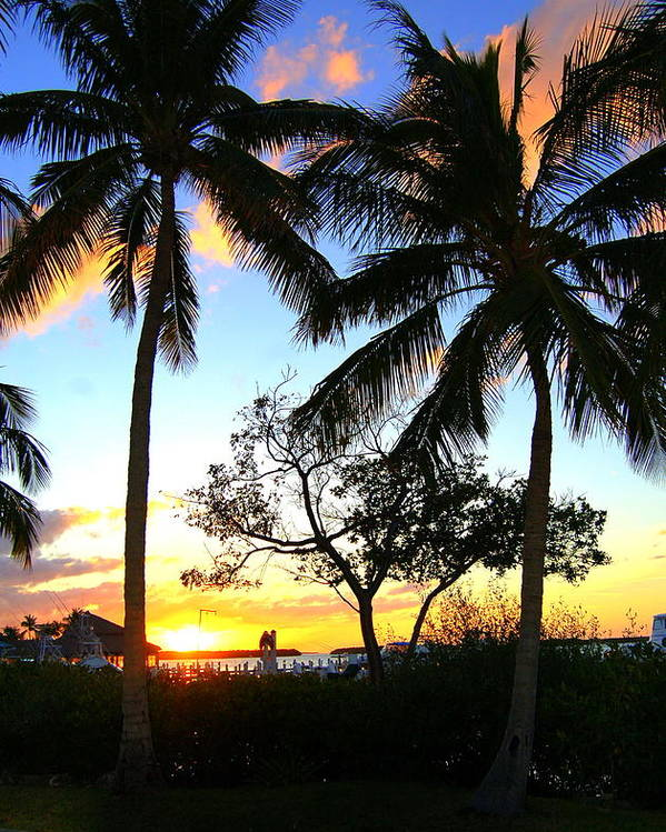 Palm Trees Poster featuring the photograph Sunset In Paradise by Joy Hiott