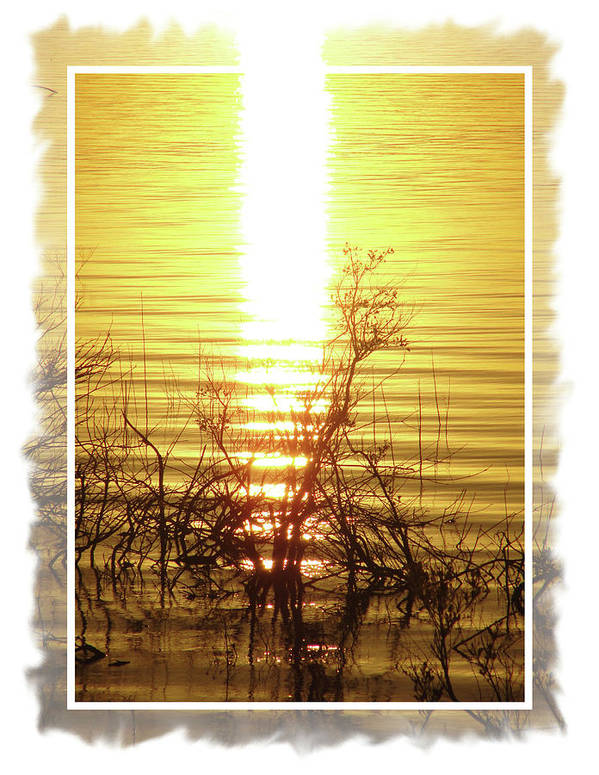 Sunset Poster featuring the digital art Sunset Serenade by Donna Aloia