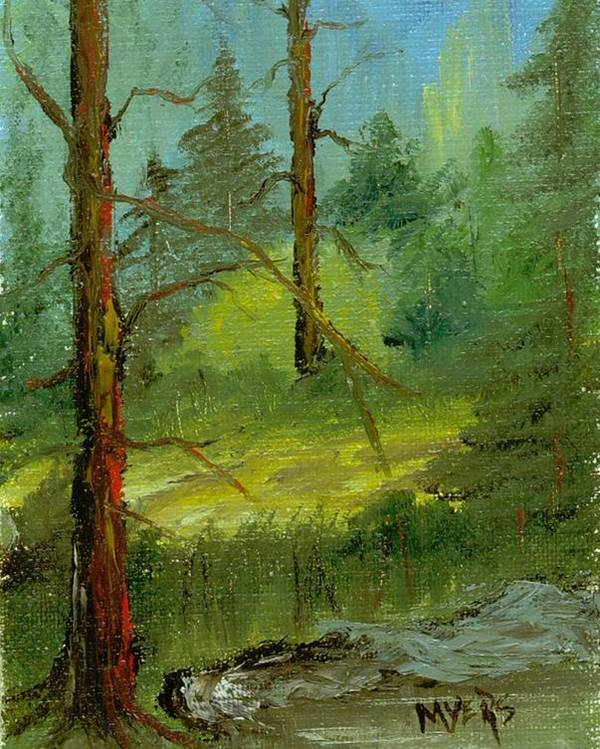Trees Poster featuring the painting Sunshine Amidst The Trees By The Stream by Rhonda Myers