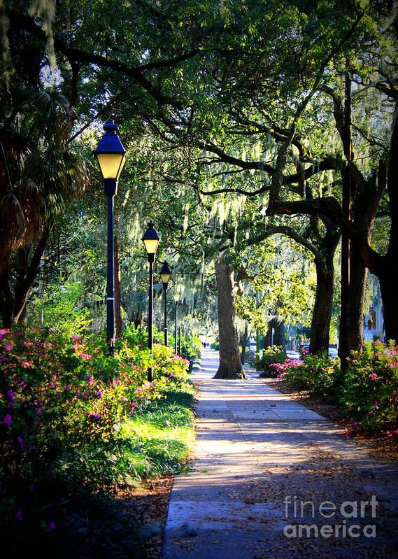 Savannah Poster featuring the photograph Sunshine On Savannah Sidewalk by Carol Groenen