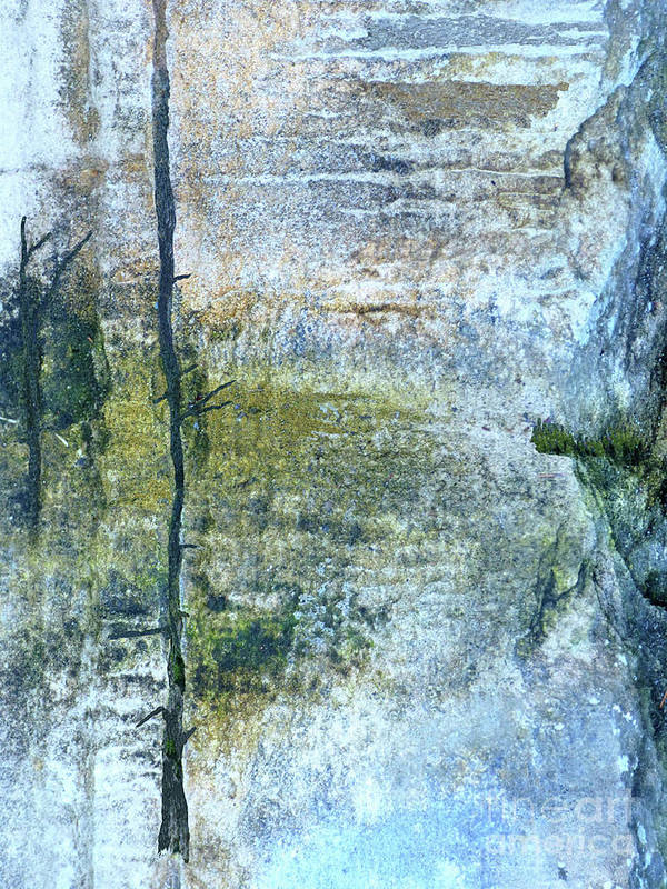 Landscape Poster featuring the mixed media Swamp Light by Sharon Eng