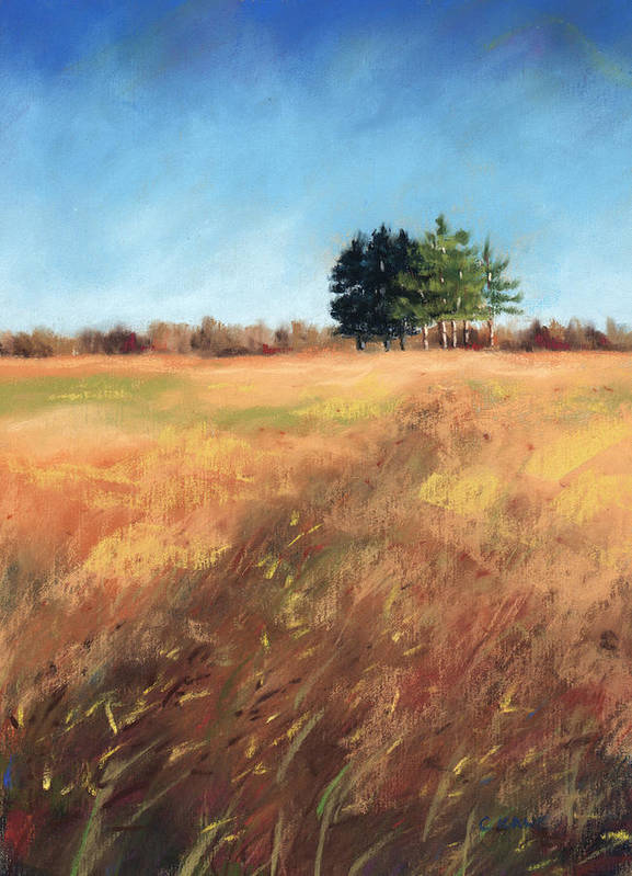 Pine Tree Pastel Poster featuring the pastel Swaying Amber by Christine Camp