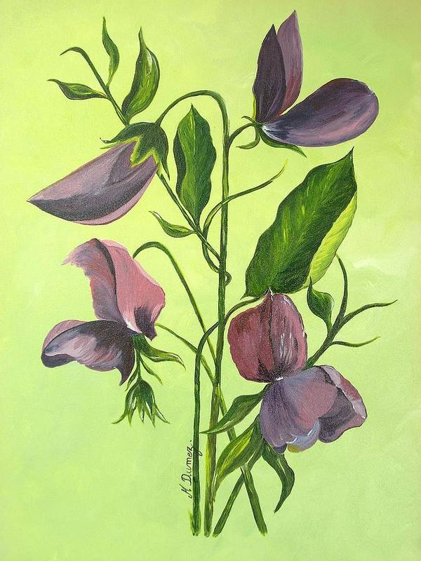Flower Poster featuring the painting Sweet Peas by Murielle Hebert