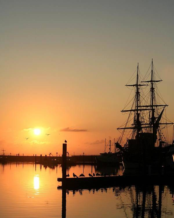 Ship Poster featuring the photograph Tall Ship Lady Washington At Dawn by Mike Coverdale