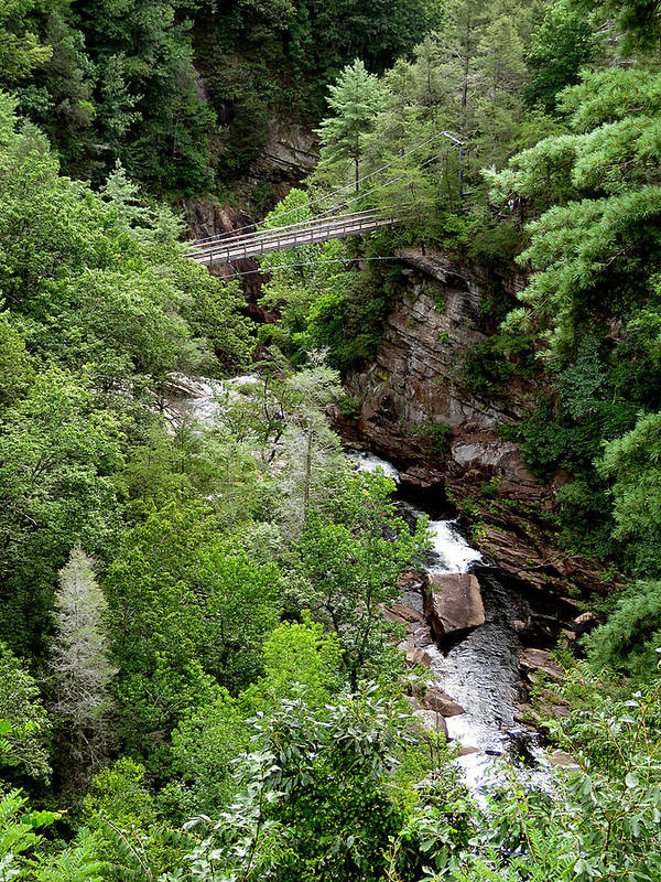 Tallulah Gorge Poster featuring the photograph Tallulah Gorge 9 by J M Farris Photography