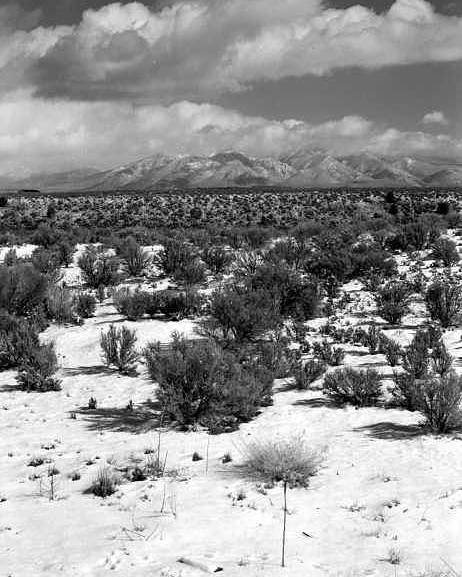 Snow Poster featuring the photograph Taos Snowfall by Susan Chandler