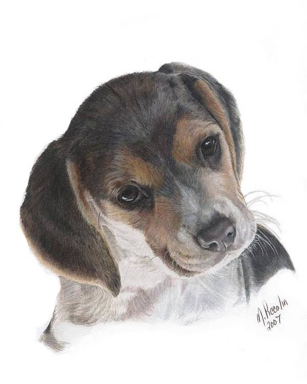 Dogs Poster featuring the painting Teagan by Marlene Piccolin