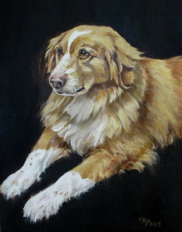 Dog Portrait Poster featuring the painting Teddy by Cheryl Pass