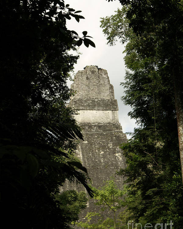 Guatemala Poster featuring the photograph Temple In The Trees Tikal Guatemala by John Mitchell