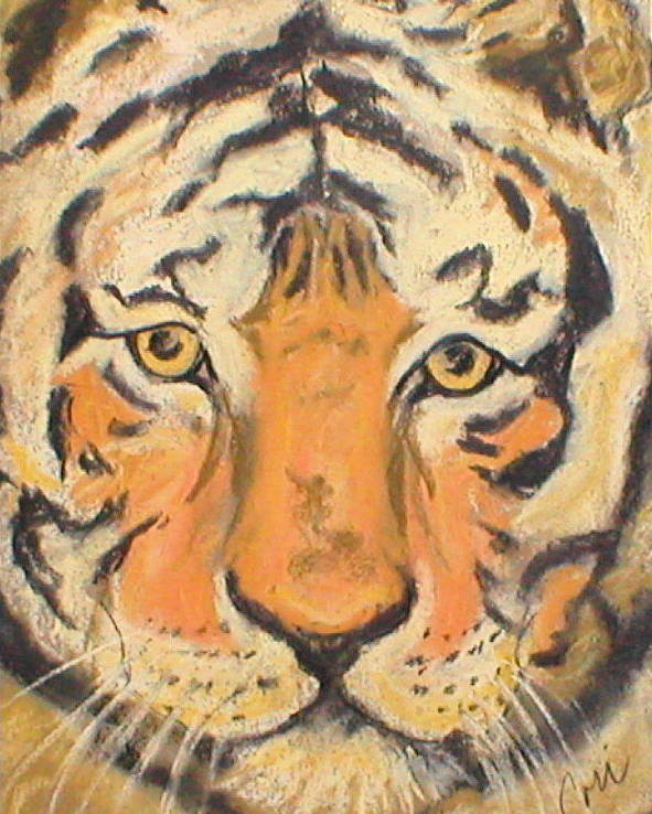 Pastel Poster featuring the drawing The Amber Stare by Cori Solomon