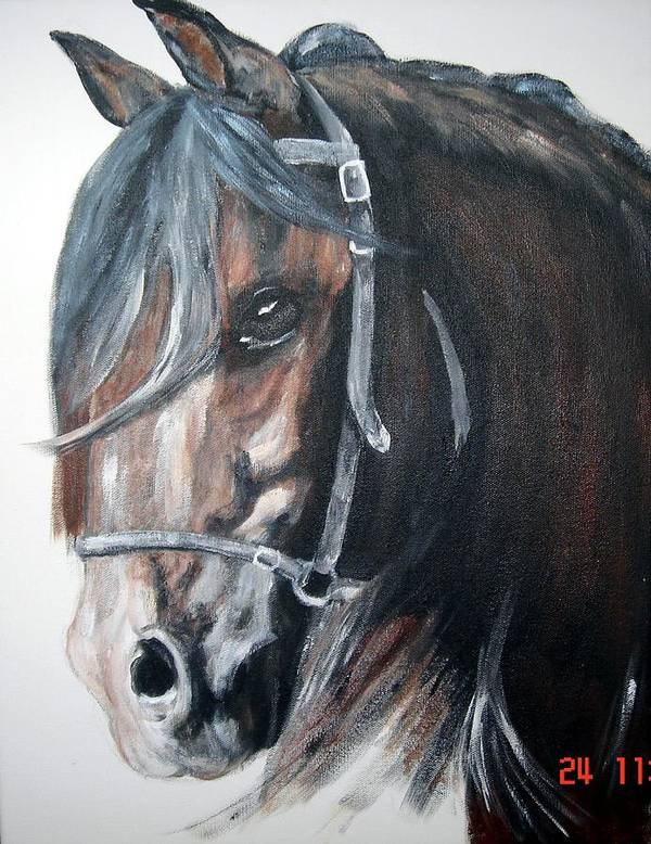 Horse Poster featuring the painting The Bay Horse by BJ Redmond