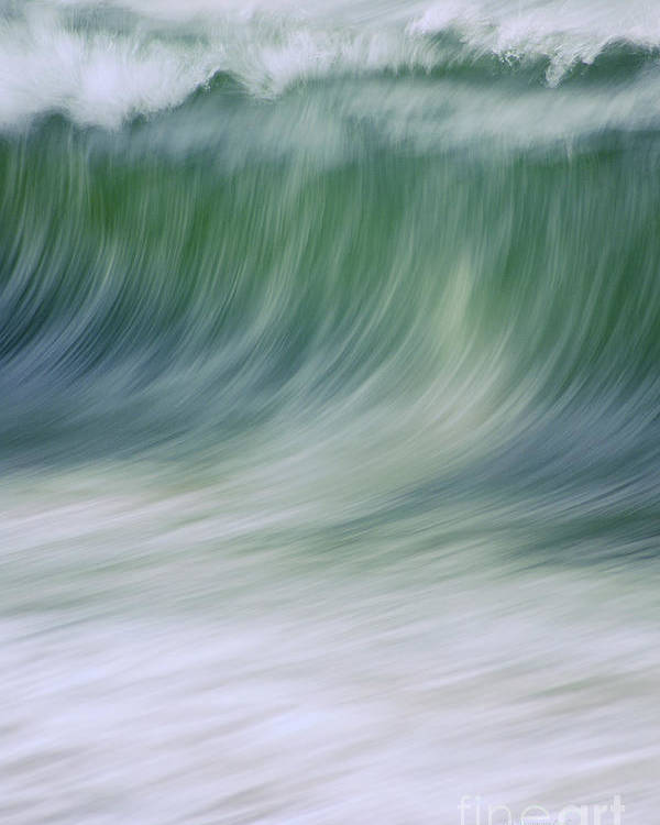 Waves Poster featuring the photograph The Beginning Curl by Jeanne McGee