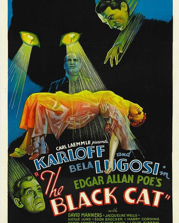 1930s Movies Poster featuring the photograph The Black Cat, Boris Karloff, Harry by Everett