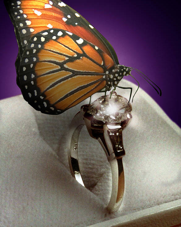 Fantasy Poster featuring the photograph The Butterfly And The Engagement Ring by Yuri Lev