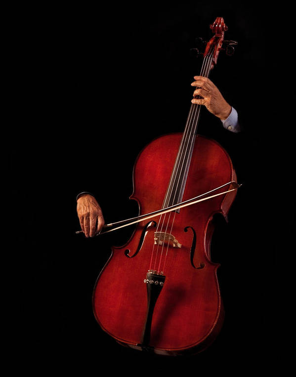 Bow Poster featuring the photograph The Cellist by David and Carol Kelly