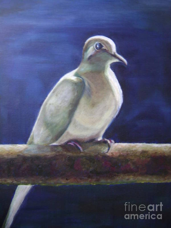 Dove Poster featuring the painting The Companion by Asha Porayath