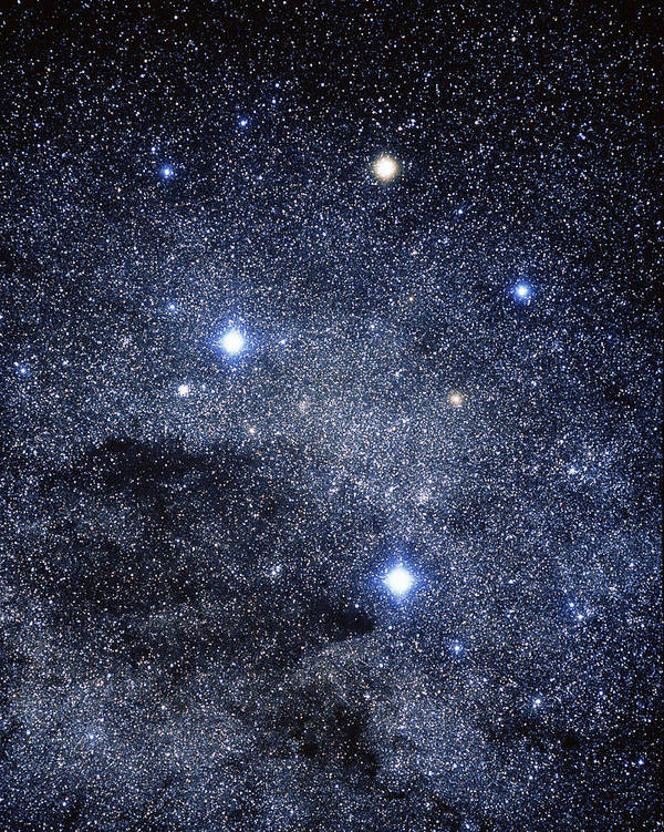 Southern Cross Poster featuring the photograph The Constellation Of The Southern Cross by Luke Dodd
