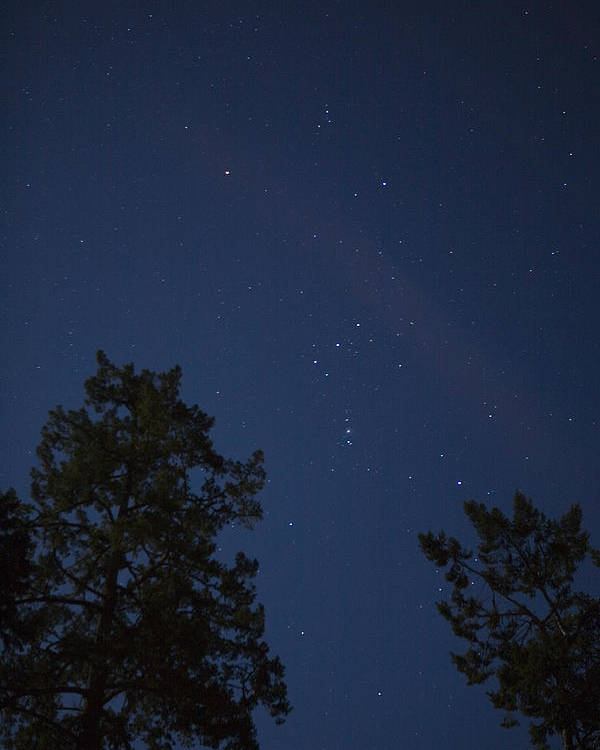 Sooke Poster featuring the photograph The Constellation Orion At Night by Taylor S. Kennedy
