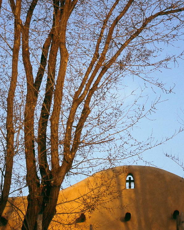 San Francisco De Taos Church With Cross And Trees Poster featuring the photograph The Cross by Lynard Stroud