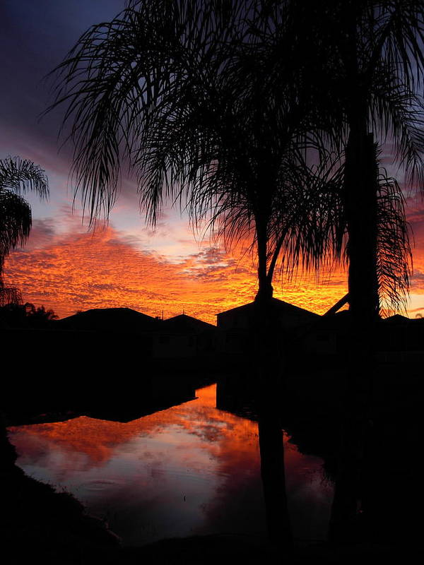 Sunsets Poster featuring the photograph The Devil's Reflection by Amanda Vouglas