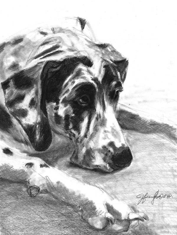 Great Dane Poster featuring the drawing The Duke by J Ferwerda