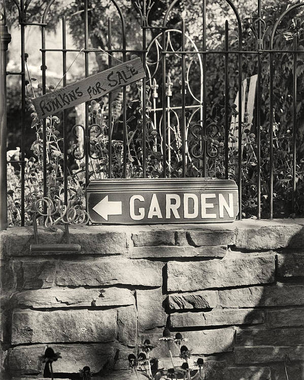 Garden Poster featuring the photograph The Garden Gate by Jim Furrer