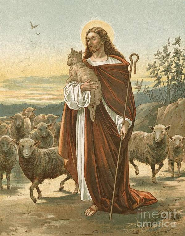 Bible; The Good Shepherd; Jesus Christ; Sheep; Halo; Crook Poster featuring the painting The Good Shepherd by John Lawson