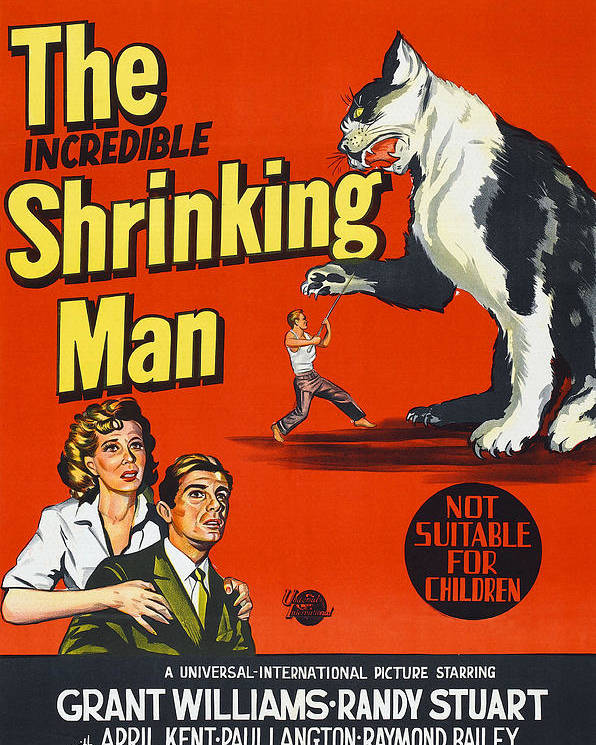 1950s Poster Art Poster featuring the photograph The Incredible Shrinking Man, Bottom by Everett