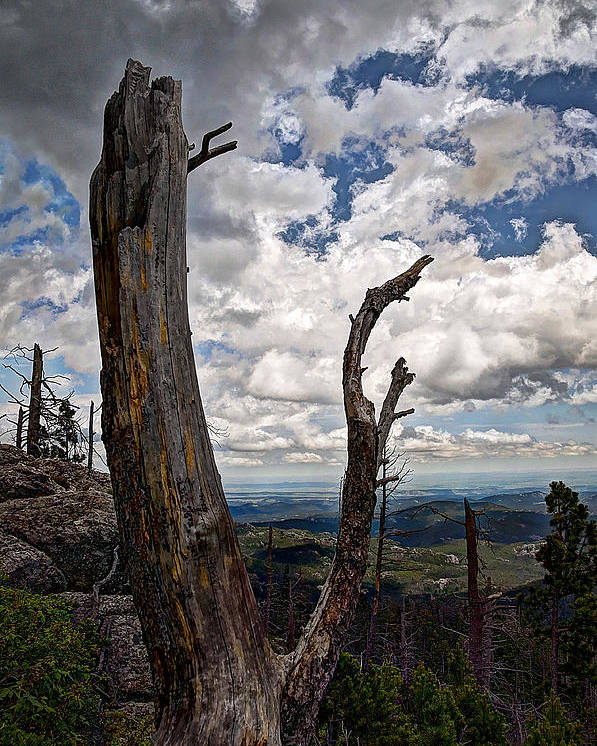 Mountain Poster featuring the photograph The Journey To Harney Peak by Deborah Klubertanz